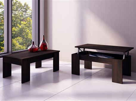 1015 - Modern Center Table With Storage