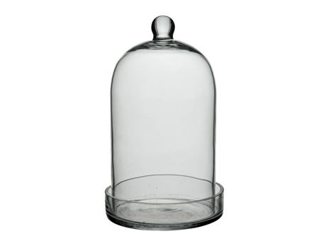 56895 - Glass Bell Round Glass Transparent