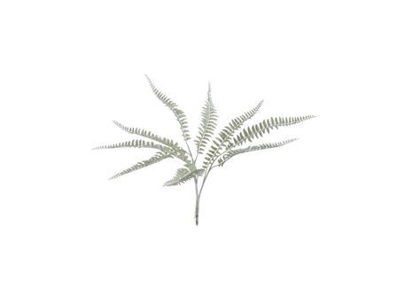 80186 - Branch Fern Plastic Light Green